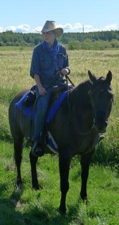 pferdejobs weltweit