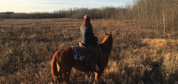farmarbeit in kanada