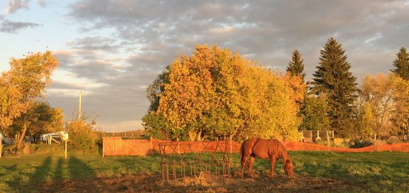 farmstay kanada seasons