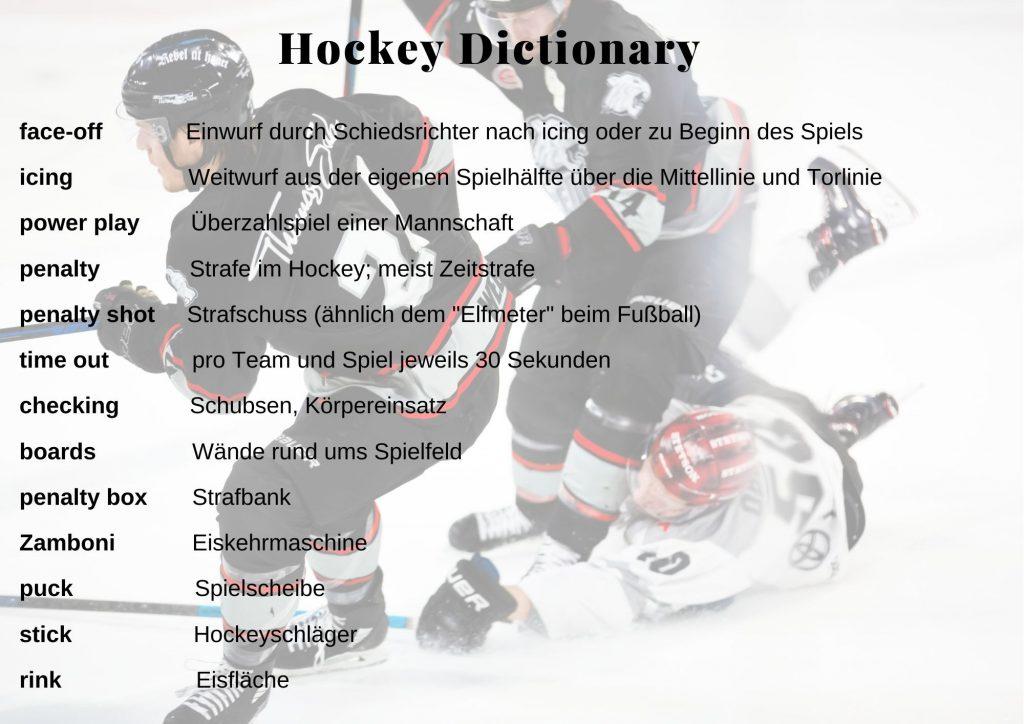 einshockey wichtigste begriffe