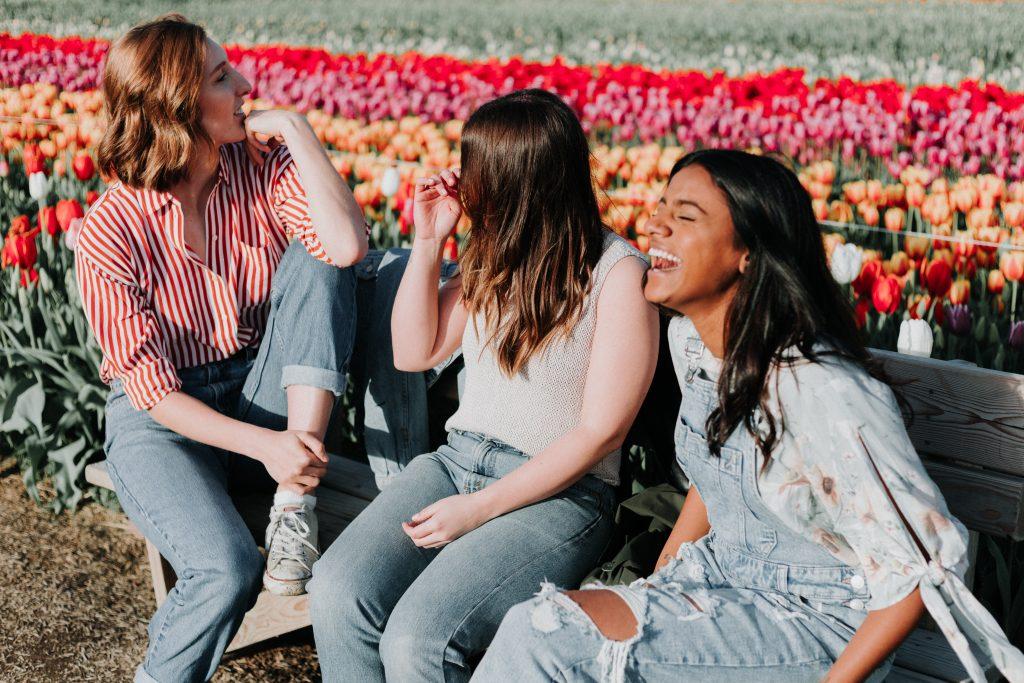Ein Picknick unter Freunden