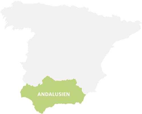 schueleraustausch-spanien-regionswahl-andalusien