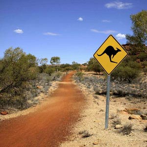 Auslandspraktikum Australien, Step by Step, letzte Infos