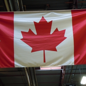 Farmstay Kanada, Erfahrungsbericht, Alina, Pferde