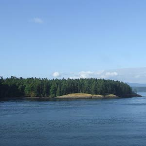 Farmstay Kanada, Erfahrungsbericht, Insel, Meer