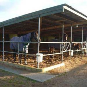 Farmstay Neuseeland, Erfahrungsbericht, Alicia, Stall