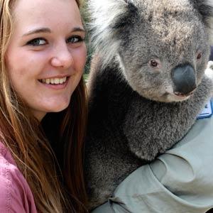 Schüleraustausch Australien, Erfahrungsbericht, Magdalena, Koala