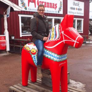 Schüleraustausch Schweden, Erfahrungsbericht, Gastfamilie, Pferd