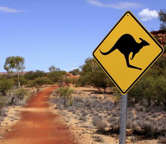 schueleraustausch-australien-schild-kaenguru-strasse