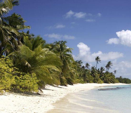 Schueleraustausch, Costa Rica, Palmenstrand, Meer