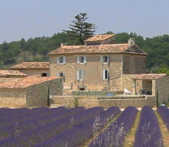 Schueleraustausch, Frankreich, Lavendelfelder, Villa