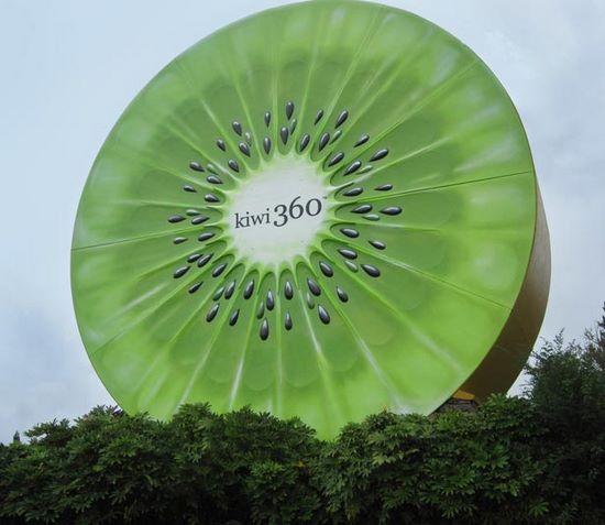 schueleraustausch-neuseeland-kiwi-monument