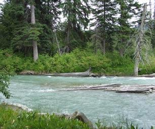 Kanada, Laenderinfo, Fluss, Wald