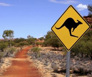 Schueleraustausch Australien, Schild, Kaenguru