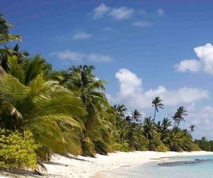 Schueleraustausch Costa Rica, Palmen, Strand, Meer