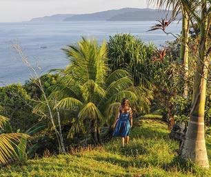 Schüleraustausch Costa Rica, Regionswahl, Palmen