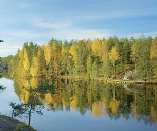 Schueleraustausch, Finnland, See, Wald, Herbst