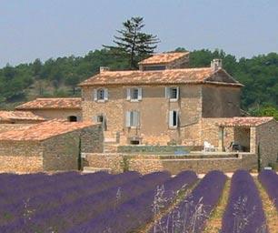 Schueleraustausch Frankreich, Lavendelfelder, Haus