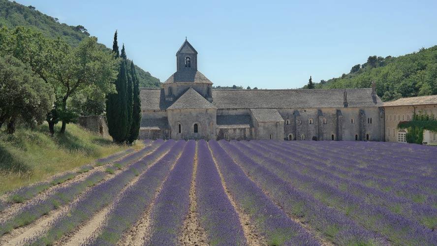 schueleraustausch-frankreich-kirche-lavendelfeld-baeume