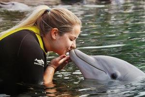 au-pair-australien-delfin-kuss