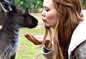 schueleraustausch-australien-maedchen-kuesst-kangaroo-baby