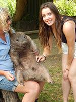 schueleraustausch-australien-maedchen-mit-wombat-kitzeln
