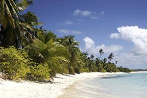 schueleraustausch-costa-rica-palmenstrand-und-blaues-meer