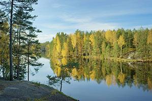schueleraustausch-finnland-see-wald-herbst