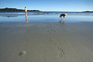 schueleraustausch-kanada-frau-mit-hund-am-strand-spazieren