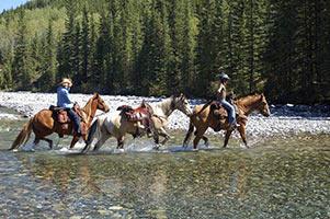 schueleraustausch-kanada-pferde-im-fluss-reiter