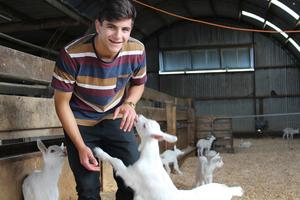 schueleraustausch-neuseeland-ziegen-farm