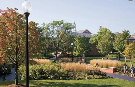 College Stipendium USA, North Park University, Chicago, Campus, Park