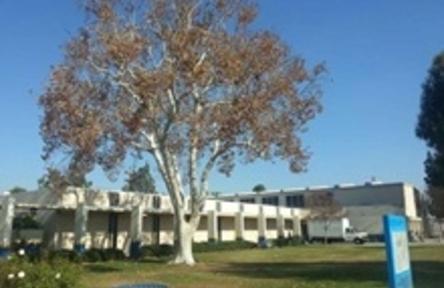 Schüleraustausch USA, Birminghamd High School Schule
