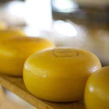 Großbitannien verückter sport, cheese rolling
