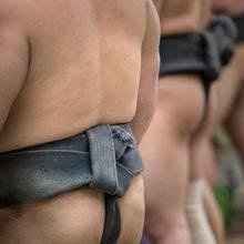 Japan Nationalsport, Sumo