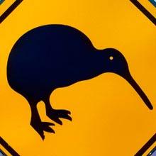 Neuseeland Nationaltier, Kiwi