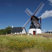 Schueleraustausch Dänemark, Windmuehle, Wiese