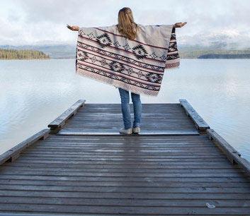 Schüleraustausch Neuseeland, Landesweites Programm, Steg