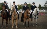 schueleraustausch-irland-schulwahl-presentation-secondary-school-kilkenny-pferde