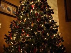 erfahrungsbericht-au-pair-usa-nadja-weihnachtsbaum