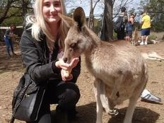 Farmstay, Australien, Luise, Känguru