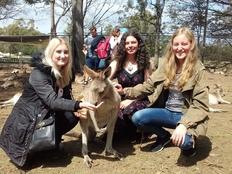 Farmstay, Australien, Luise, Känguru, Freunde