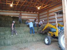erfahrungsbericht-farmstay-kanada-carolin-hubel-scheune